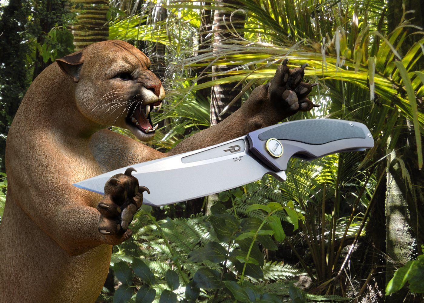 Bestech Predator Review