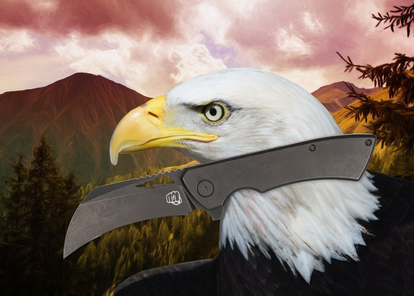Hawkbill Klinge - Vorteile, Nachteile, Einsatzmöglichkeiten