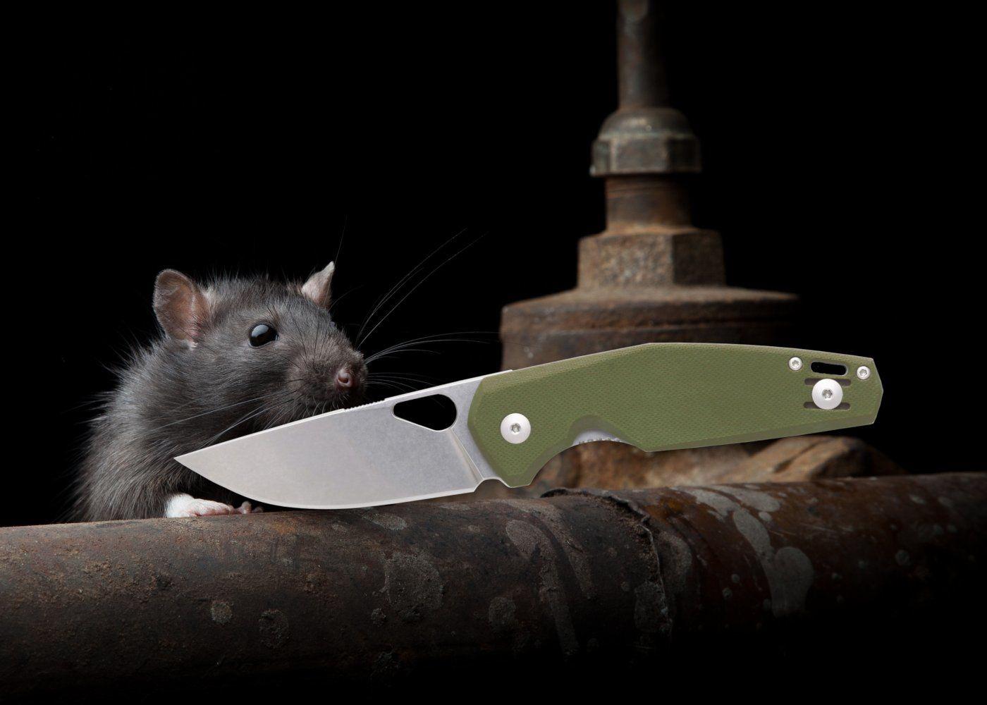 Giant Mouse Firmenportrait und Nimbus V2